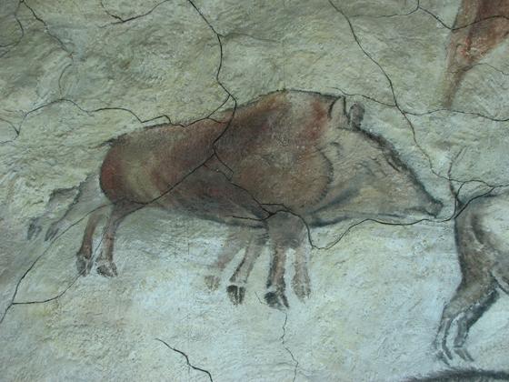 Боров, рисунок из Альтамиры