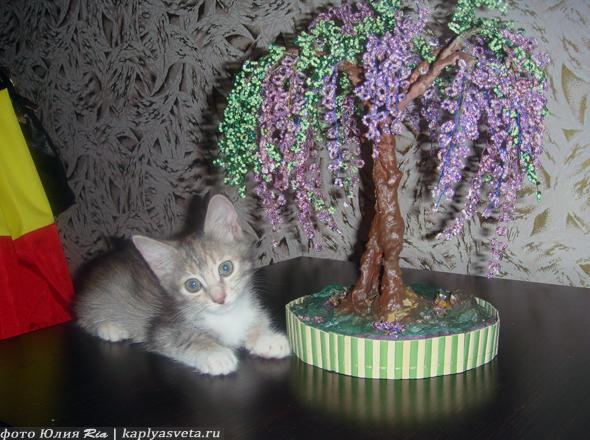 Дерево из бисера, бисерный бонсай