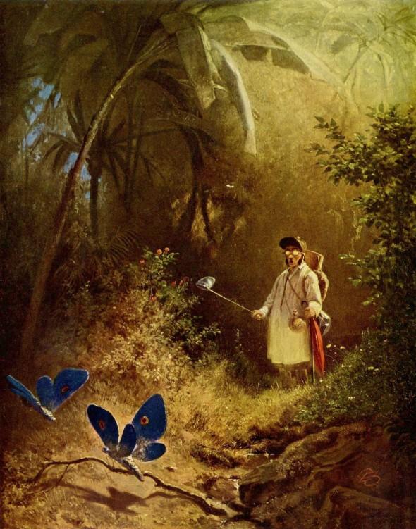Карл Шпицвег Охотник на бабочек