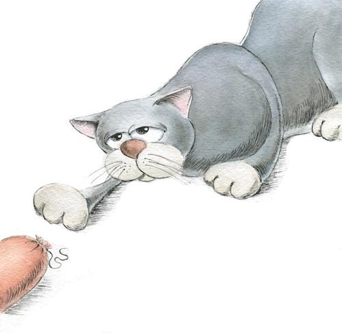 Иллюстрации Ольги Шашкевич